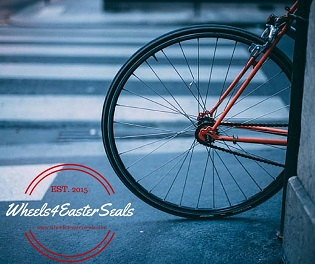 Wheels for Easter Seals - El Tour de Tucson Bike Race