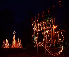 Ritzy's Fantasy of Lights and Trees of Lights displays