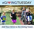 Join us to build a virtual tower of donations on Giving Tuesday