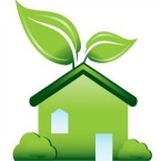 Detox Your Home By Cleaning Green